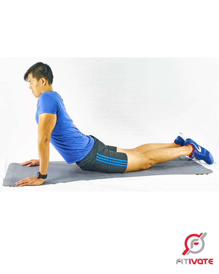 Prone Stretch